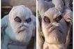 Wonders! Villagers freak out after goat with human face and demonic traits is born