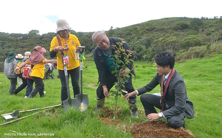 Cherry blossoms soon to bloom in Benguet
