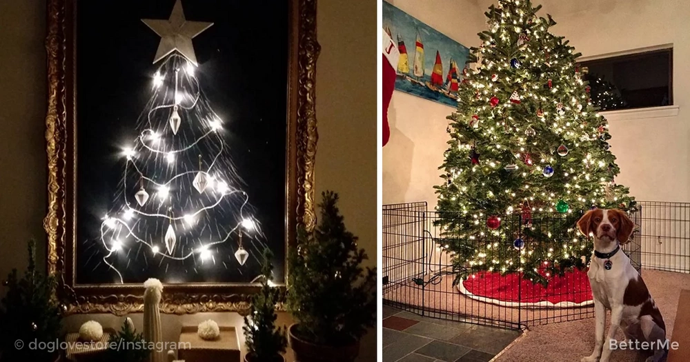 15 people who've found a way to protect their Christmas trees from cats and dogs