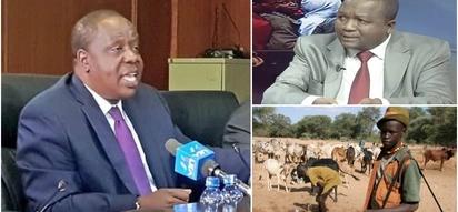 Matiang'i na Kamket wakwaruzana kuhusu fidia ya mifugo waliouawa na polisi