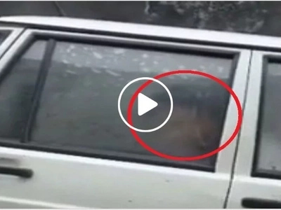 Chinese students filmed having sex in driving instructor's car