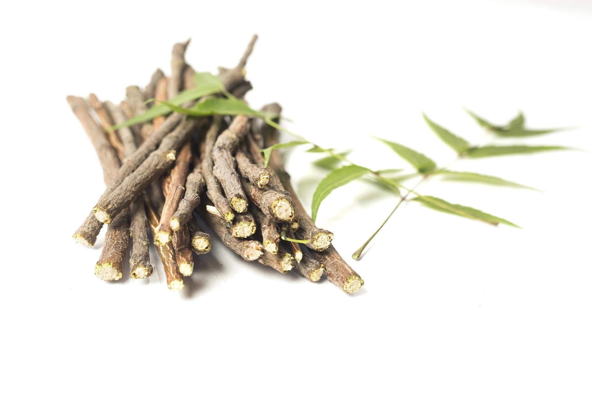 Ashwagandha: un remède naturel prometteur pour les problèmes de thyroïde