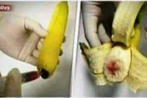 TRENDING! Bananas containing AIDS and HIV.