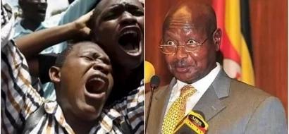 Kenyans given a stern warning over milk
