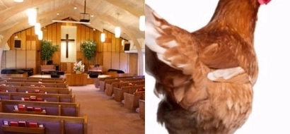 Woman gets into big trouble after bringing chicken to church