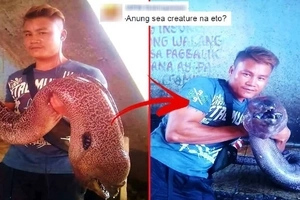 Masamang pangitain? Check out the viral photos of a horrifying sea creature found after a strong earthquake in Sultan Kudarat!