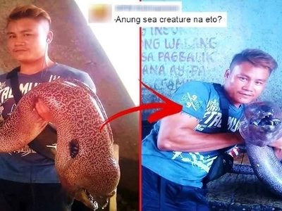 Check out the shocking photos of a horrifying sea creature found after a strong earthquake in Sultan Kudarat!