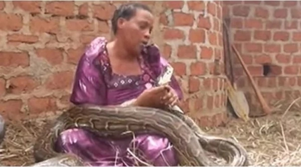 Woman gives birth two twins; a girl and snake (photo)