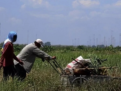 The struggle has ENDED! Hacienda Luisita farmers to receive 358 hectares