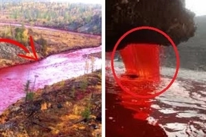 This river suddenly turned blood red overnight. Locals suspect that the end of the world is near!