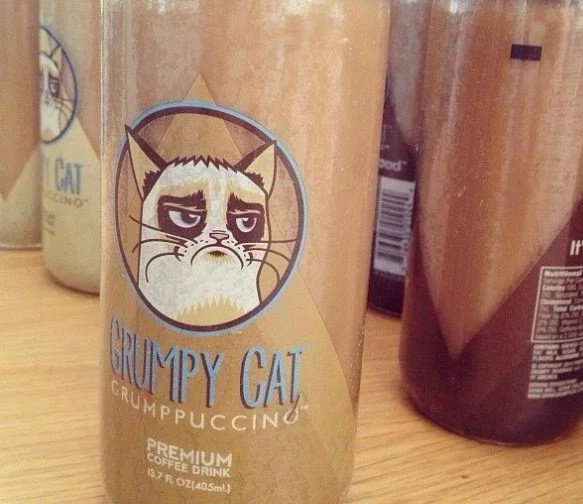 Grumpy Cat LLC in $600 000 lawsuit