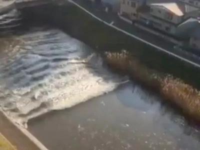Shocking Footage Captures Tsunami Rolling Through Japanese Streets