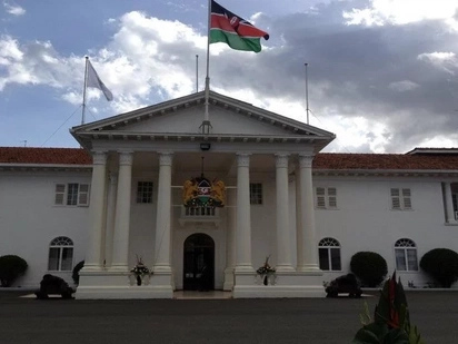 State House apologises after shocking offensive tweet to flamboyant city lawyer