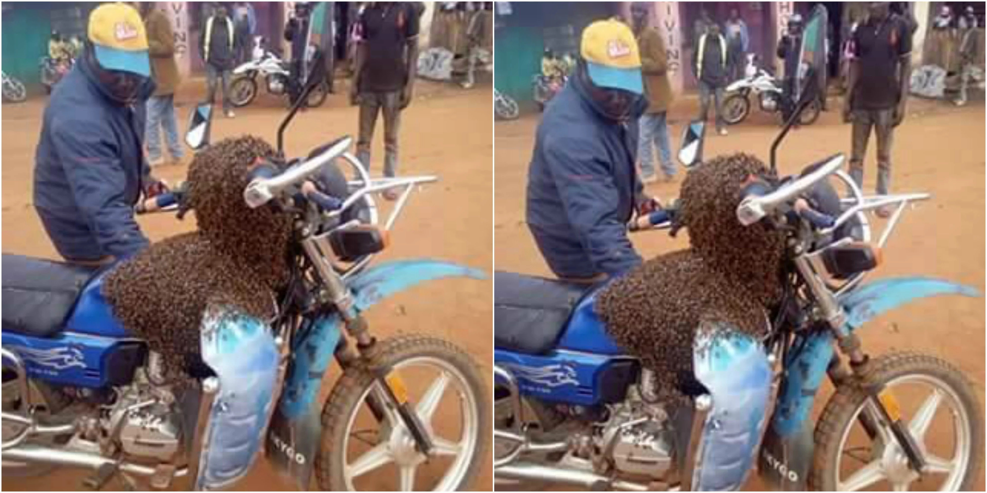 Witchcraft is real, Makueni man sends a swarm of bees to recover his stolen motorbike