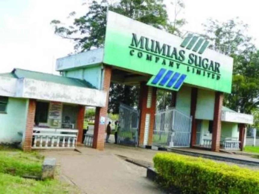 Mumias Sugar Company legal manager SHOT dead, wife injured in an attack at their Matungu home