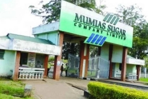Mumias Sugar Company legal manager SHOT dead, wife injured in an attack at their Matungu home