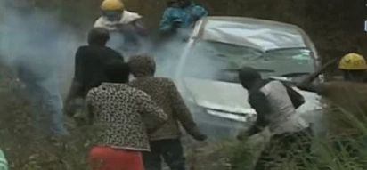 Bees attack road crash victims and rescuers in Embu