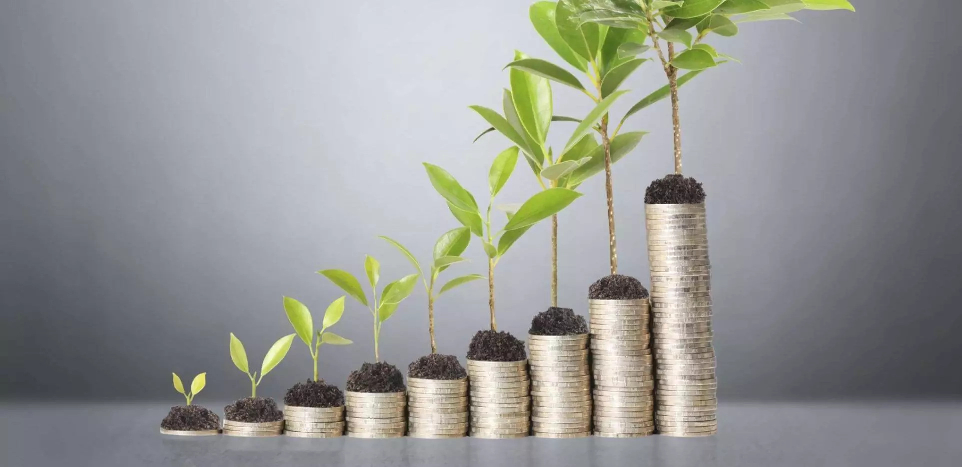 Best Businesses to Start in Kenya with Less Capital: Investment Tips