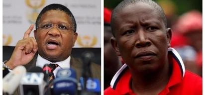 Fikile Mbalula wants to test his Taekwondo skills on Julius Malema