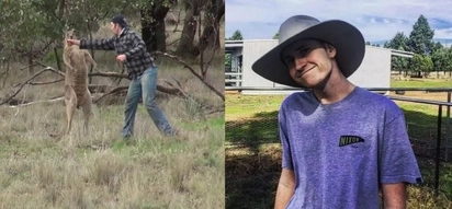 Find Out The Heartbreaking Story Behind The Man Punching Kangaroo Video