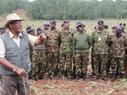 KDF to plant more than 3 million trees days after govt announced plans to install CCTVs in forests