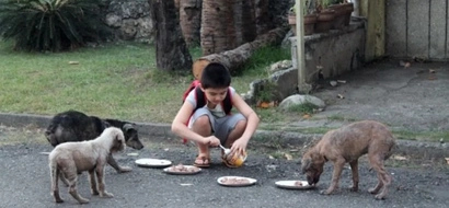 Inspiring 9-year old started feeding stray dogs and now has his own animal shelter