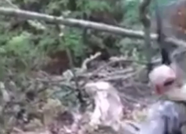 Bear Comes From Dead And Brutally Attacks Hunters (Video)