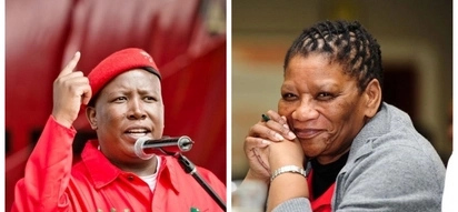 Malema, Modise among 5 South Africans to be sworn in as Pan African Parliament members