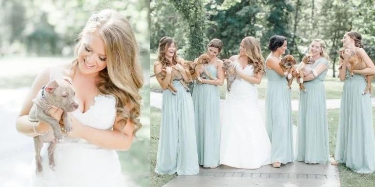 Un tierno y divertido reemplazo para los ramos de la boda: ¡perritos rescatados!