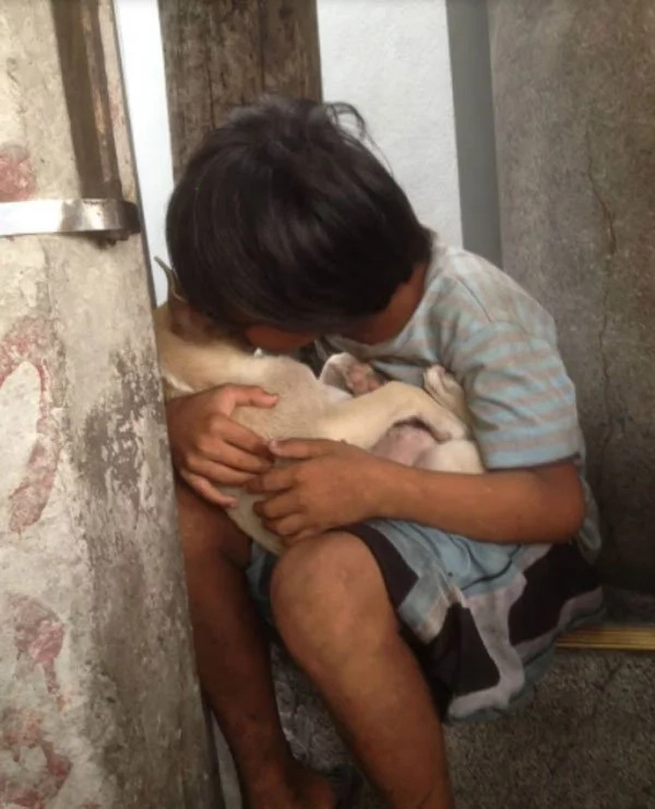Homeless kid takes care of stray dog and treats it like a brother