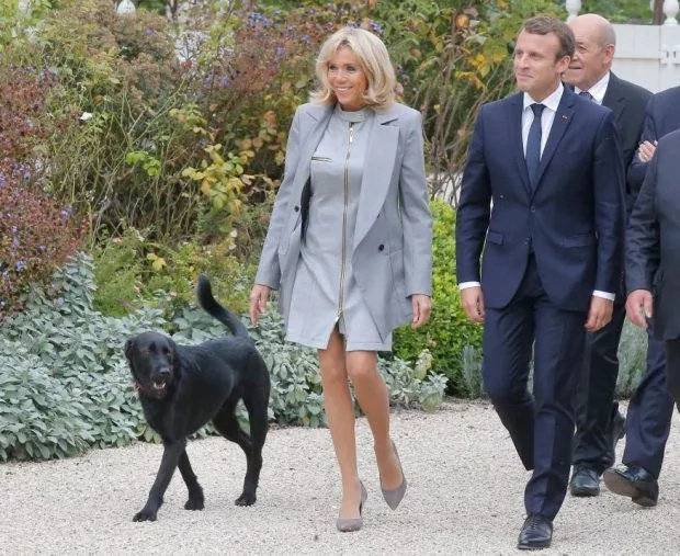 President Macron, First Lady Brigitte and their dog Nemo at a previous occasion. Photo: Getty Images
