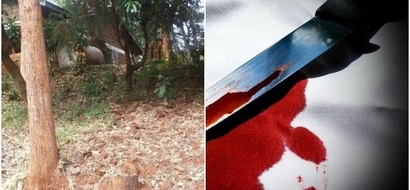 Kirinyaga mom murders her son as a cult sacrifice. Her reason will bring you to TEARS