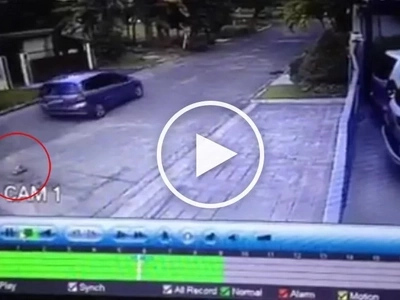 CCTV footage exposes unknown driver who killed Jennylyn Mercado's 5-year old dog