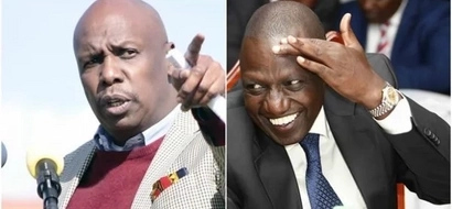 Ruto, Moi fierce battle sucks in allies and its interesting