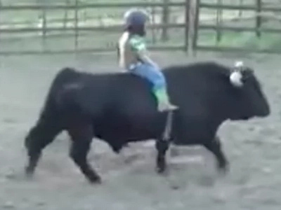 Three-year-old straps onto back of bull. When the gate opens, watch world's cutest bull ride