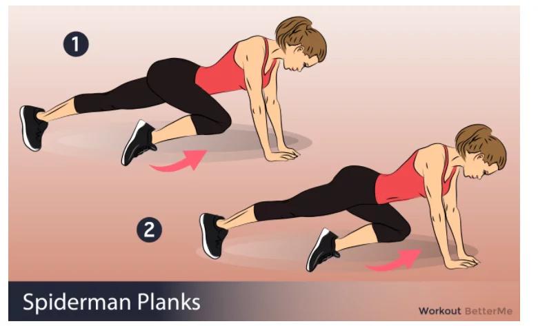 Plank #1
