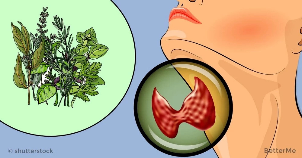 10 herbs that can help you treat hypothyroidism