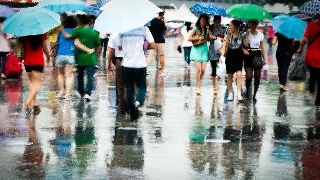 Keep your family healthy this rainy season