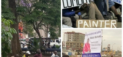 Jobless Kenyans take matters in their own hands after Govt fails to create VACANCIES; forget about holding up placards to find work