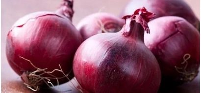 Fight against cancer receives fresh boost as researcher discover ONIONS can destroy the deadly disease (photos)