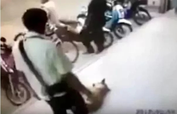 Man attempts to kick a stray dog but he did not count on what would happen after