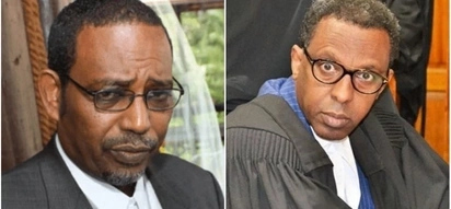 Join politics if courts are too hot for you - Farah Maalim tells Ahmednasir