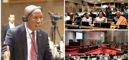 Fiery Malema lectures African leaders at Pan-African Parliament