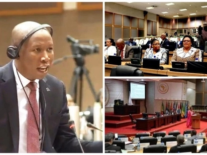 Malema gives African leaders a dressing down at Pan-African Parliament