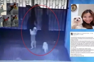 Enraged Pinay doglover begs netizens to locate the men who stole her pet in viral post