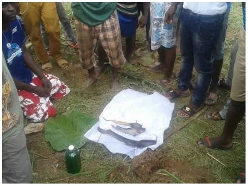 Confusion as group of youths hold funeral service for dead FISH (photos)