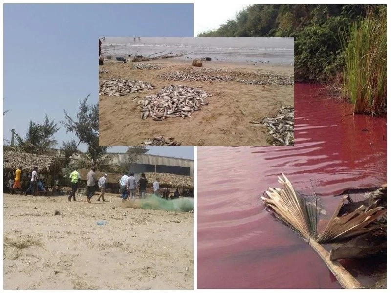 Rivers of blood? See what was found inside a river recently (photos)
