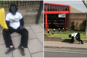 Man dressed as a gorilla is still CRAWLING in London Marathon 3 days later (photos, video)