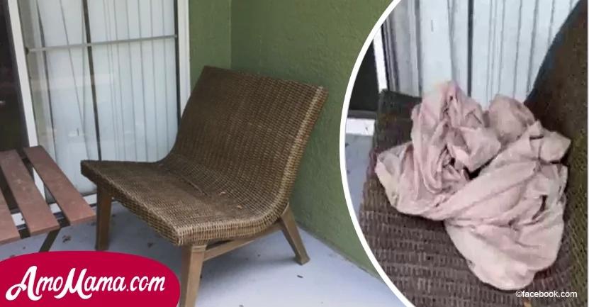 Hombre escuchó un ruido extraño en su porche trasero y se apresuró a ver algo envuelto en una toalla…