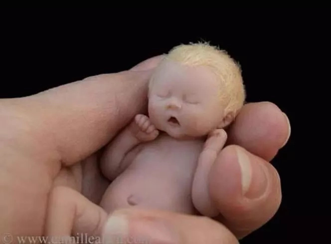 This baby is only about the size of a hand, look closer as you realize what it truly is!